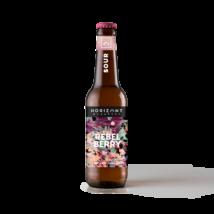 Rebel Berry | Horizont (HU) | 0,33L - 4,5%